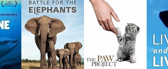 Feb 2015: Ivory Trade documentary screening